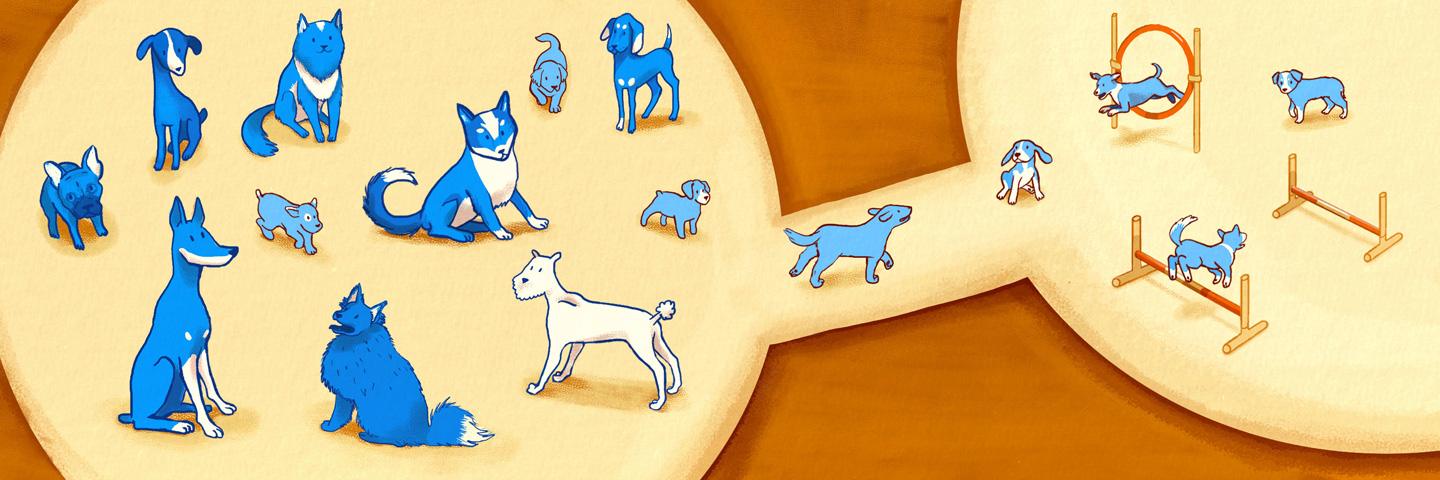 Illustration of dogs