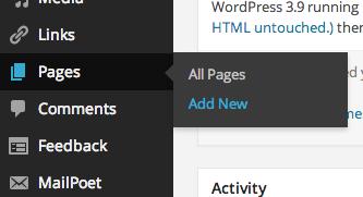 Add New page, in the WordPress menu