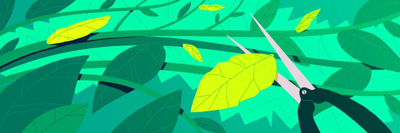 Scissors cutting leaf.