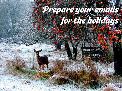 mailpoet-holiday-email-tips