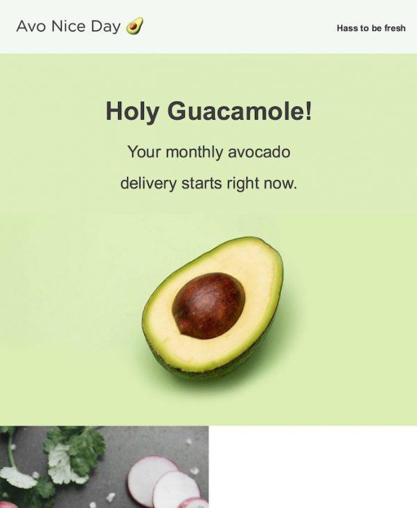 avocado email template