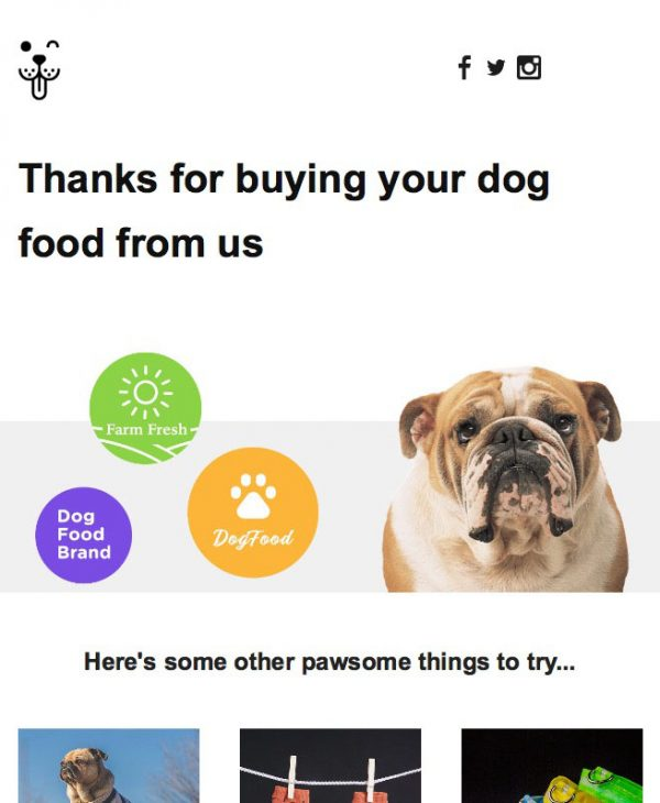 dog food email template