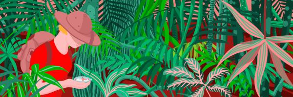 Explorer in the jungle