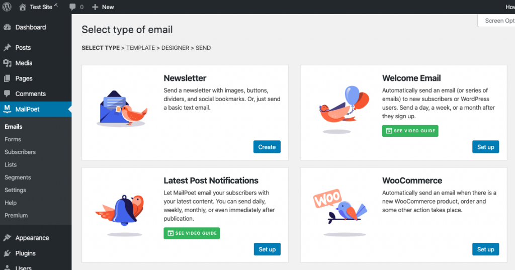 Email options available in WordPress