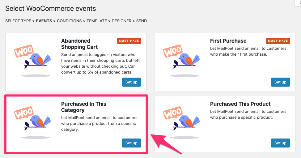 woocommerce email type purchased this category mailpoet settings