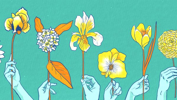 Illustration of 10 hands holding a flower