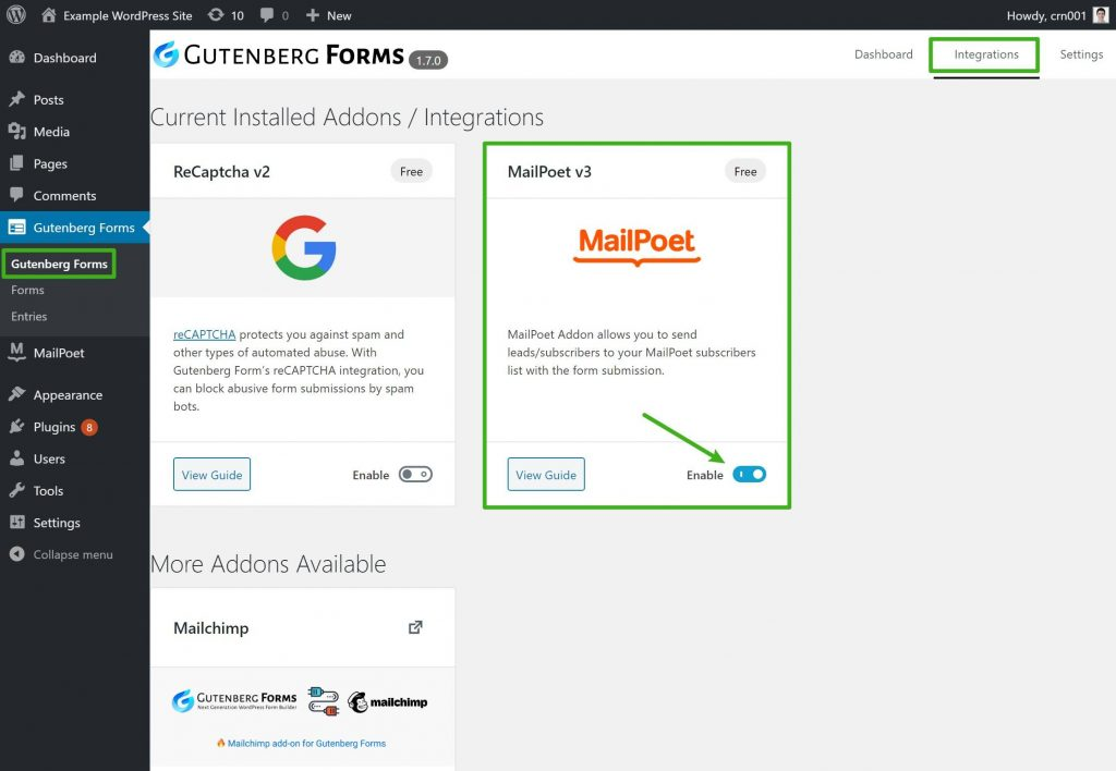 Enable the Gutenberg Forms MailPoet addon
