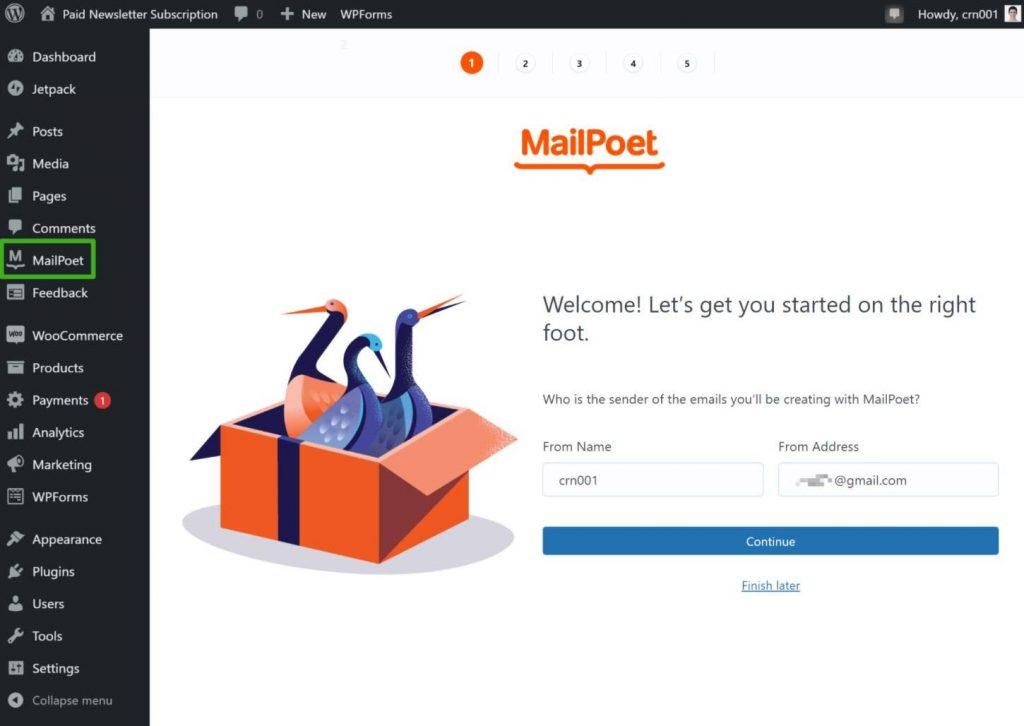 MailPoet setup